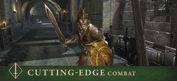 Die Elder Scrolls: Blades iOS Artwork - Schneidekämpfe