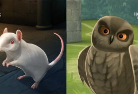Haustiere zu Harry Potter hinzugefügt: Hogwarts Mystery auf dem Handy